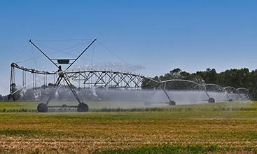 Irrigation farming.